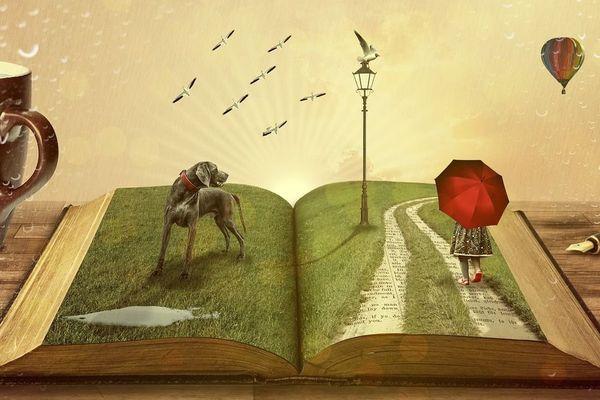 """""""Pour bien comprendre quelqu'un, c'est mieux, de lire par dessus son épaule, les livres qu'il lit"""" Dany Laferrière"""