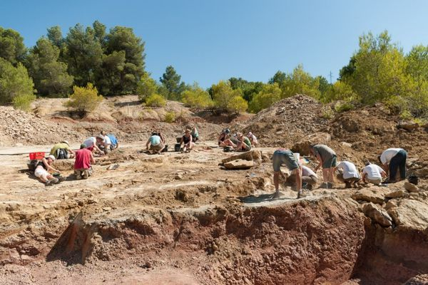 L'équipe de paléontologues en action sur le gisement de Velaux–la Bastide Neuve