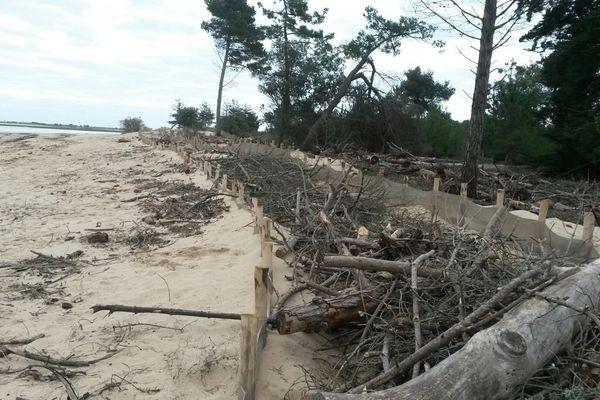 Les filets mis en place pour protéger le Bois de Trousse-Chemise.