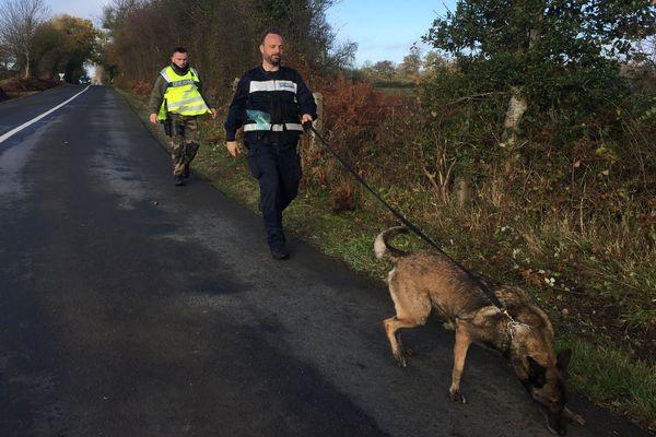 Les gendarmes font appel à un chiens pour retrouver la trace de l'octogénaire disparu le 22 novembre à La Carneille
