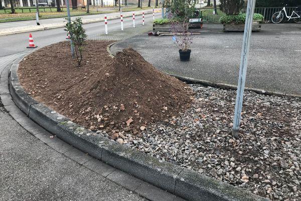 Fin des jardins de pierres en Allemagne, retour de la terre et des végétaux