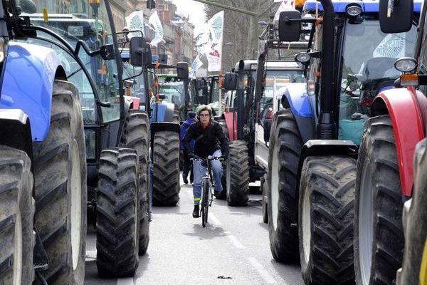 Lors d'une manifestation d'agriculteurs à Toulouse, en novembre 2014.