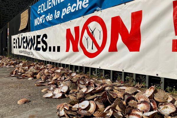 Les pêcheurs craignent la disparition de la coquille Saint-Jacques avec la construction d'un parc éolien en baie de Saint-Brieuc.