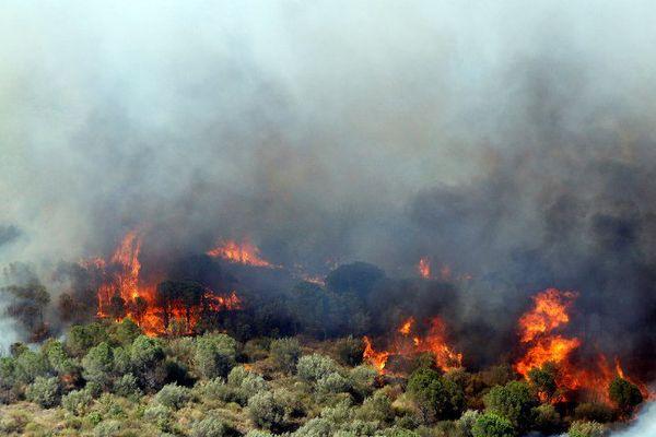 L'incendie vu de Rodès (Pyrénées-Orientales) le 11 août 2016.