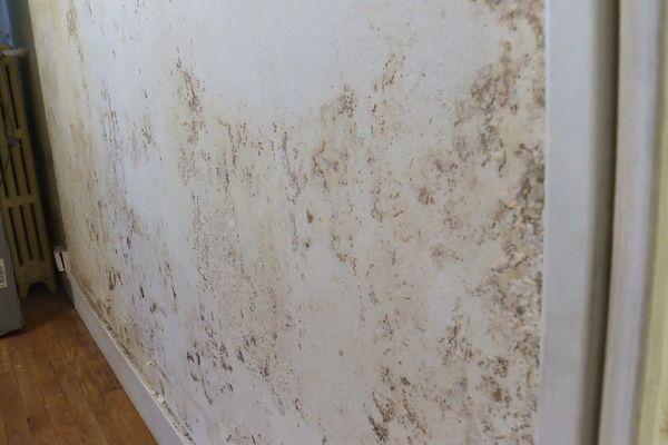 Murs jaunis, humidité : certains logements sont dans un état insalubre.