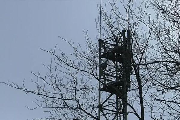 De nouveaux pylones ont été érigés en Saône-et-Loire sur  les communes de La Grande-Verrière et de Saint-Léger-sous-Beuvray. Il s'agit des deux premiers sites multi-opérateurs d'accès à l'internet mobile.