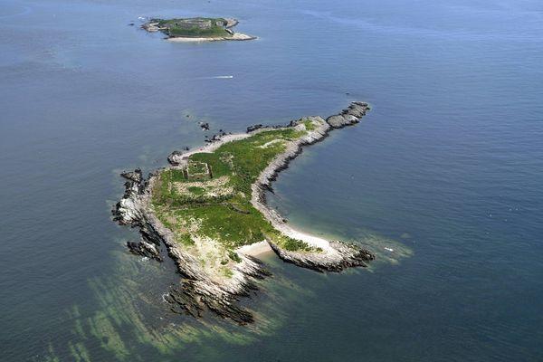 Îles Saint-Marcouf, en 2015
