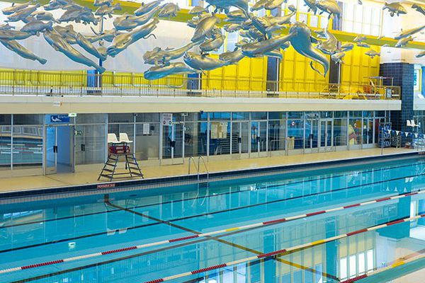 Pour l'instant, à Nantes, il n'existe que la piscine Léo-Lagrange sur l'île Gloriette qui offre des couloirs de nage de 50 mètres,