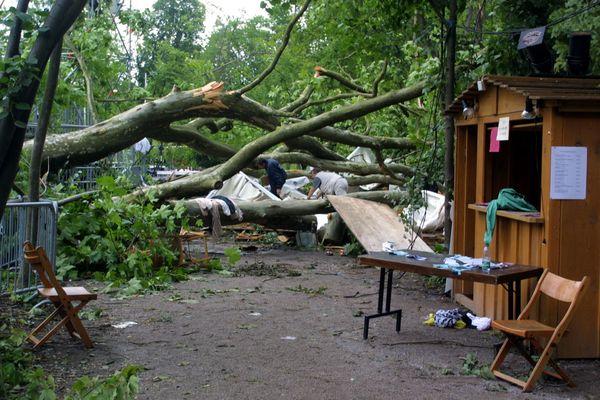 Le 6 juillet 2001,treize personne sont mortes et une centaine d'autres ont été blessées après la chute d'unplatane provoquée par unviolent orage dans le parc du Pourtalès à Strasbourg.