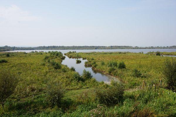 La réserve naturelle du Marais Vernier