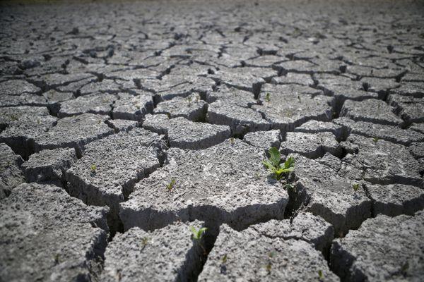 Jeudi 18 juillet, la préfecture du Cantal a mis en place de nouvelles restrictions d'eau. Des mesures qui ont été étendues à de nouvelles communes et renforcées dans d'autres.