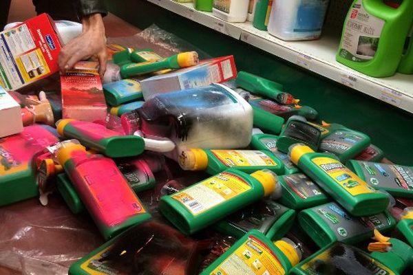 Les faucheurs volontaires d'OGM avaient mené des actions coup de poing simultanées pour dénoncer l'utilisation du glyphosate.
