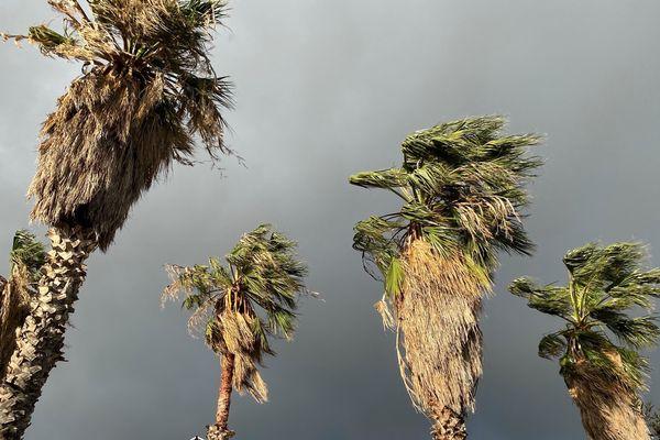Un record de vent a été enregistré à 170 km/h à Bastia ce dimanche, vers 6h du matin.