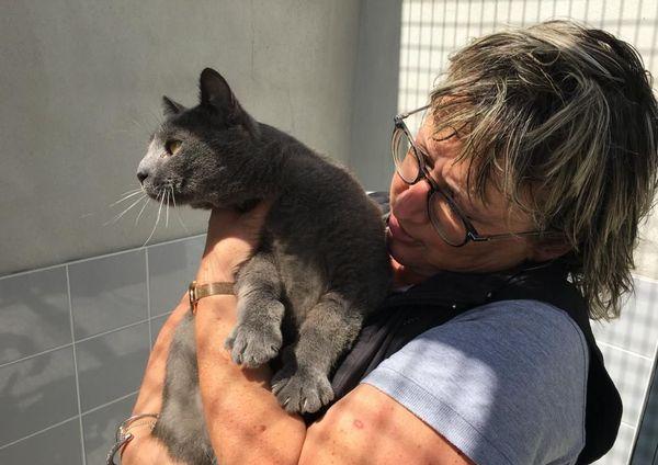 Fabienne Renouf, responsable du refuge de Tollevast (50), en compagnie de Blues, chat à adopter