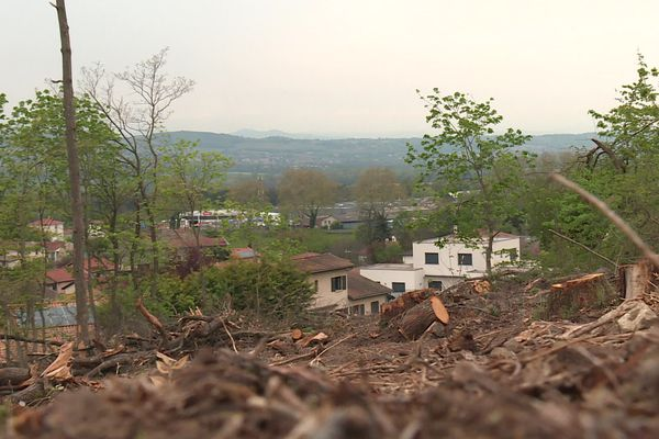 Le paysage est désormais beaucoup plus clairsemé aux abords des habitations à Lissieu