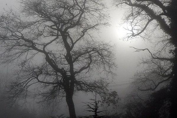Le soleil l'emportera sur les brumes et brouillards
