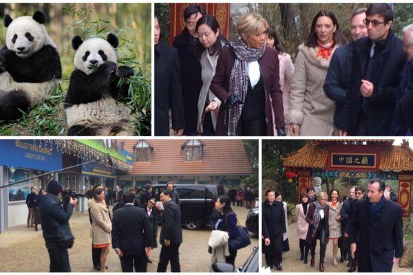 Arrivée à Beauval de Brigitte Macron, la marraine du bébé Panda et le vice-ministre des affaires étrangères chinois, Zhang Yesui