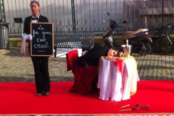 """""""Happening"""" L214 contre le foie gras à Vannes"""