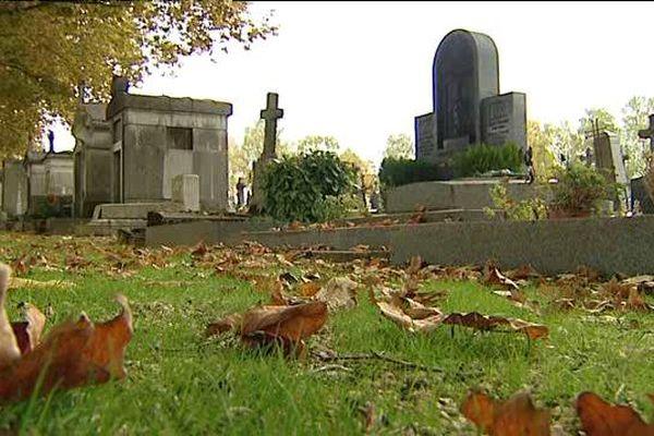 Non traitée, de l'herbe pousse dans les allées du cimetière des Péjoces à Dijon