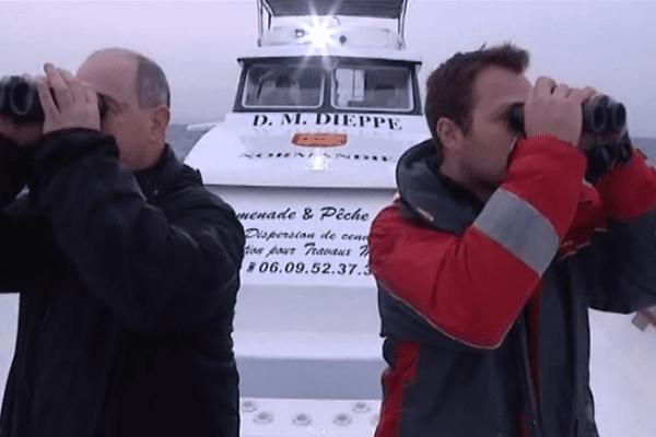 Ornithologues observant le comportement des oiseaux au large de Dieppe Le Tréport