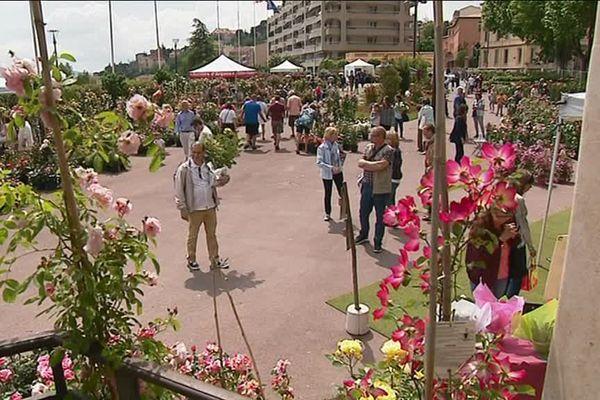 Expo rose a lieu dans la vieille ville de Grasse et aux alentours.
