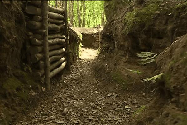 Sur la petite commune de Plouedern, dans le Finistère, ces tranchées sont des vestiges de la Première Guerre mondiale.