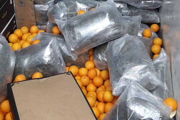 Le cannabis était caché dans le fond du camion au milieu des cartons d'oranges