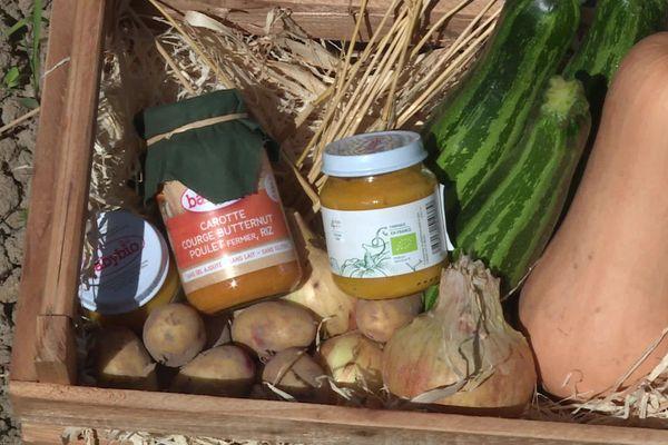 Les légumes des petits pots Babybio sont produits en Maine-et-Loire et en Sarthe