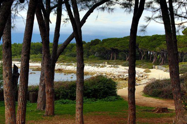 L'île Sainte Marguerite