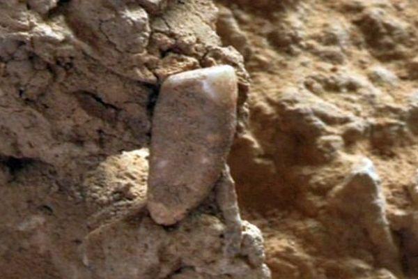 Tautavel (Pyrénées-Orientales) - une dent humaine d'environ 550.000 ans découverte - juillet 2015.