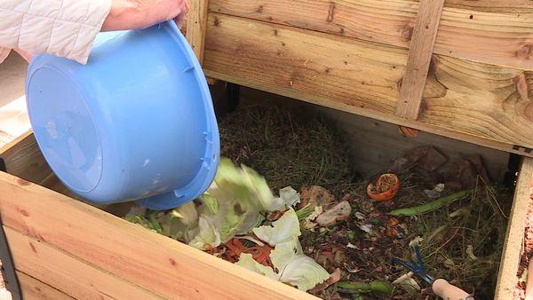 Dans un composter, on peut mettre des épluchures de fruits et légumes, des végétaux frais ou encore fleurs fanées mais pas de coquilles d'œuf ou de matières d'origine animale.
