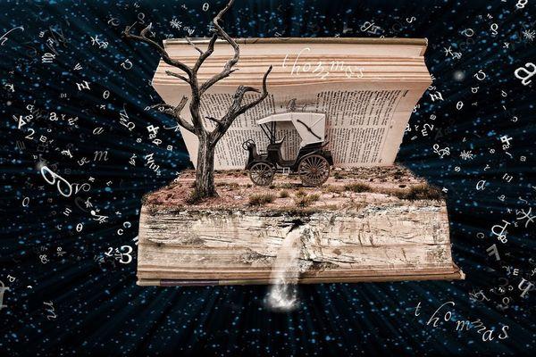 """""""Un livre est une fenêtre par laquelle on s'évade"""" J.Green"""