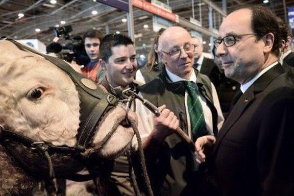 François Hollande au stand des vaches charolaises, samedi 21 février 2015, au Parc des expositions de la porte de Versailles à Paris.