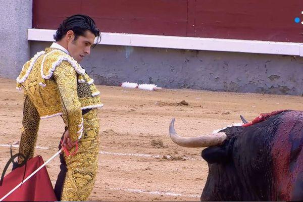 Le visage comme une lame, l'arrogance étudiée. Alejandro Talavante est une figure essentielle des arènes. Sa faena de Madrid en mai dernier est dans SDT 115.