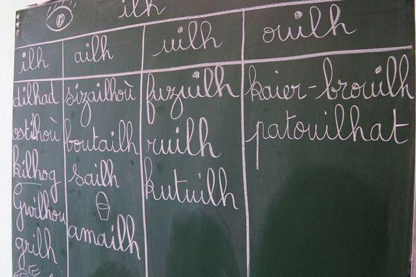 Diwan pratique l'enseignement immersif: on parle breton aux élèves sur tout le temps scolaire, y compris à la cantine et dans la cour de récréation. Le français n'est réintroduit progressivement dans l'enseignement qu'à partir du CE1. C'est précisément cela qui a été jugé contraire à la constitution.