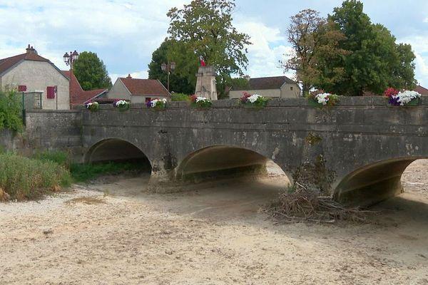A cause de la sécheresse, en Côte-d'Or, à Lux, la rivière Tille est à sec pour la troisième année de suite et la faune est en grande souffrance.