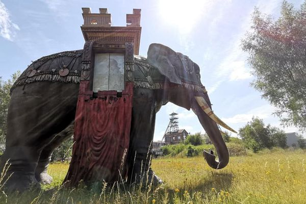 L'éléphant de la mémoire est planté au milieu de la friche minière de Wallers depuis 1997.