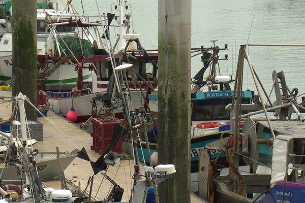 Les bateaux de pêche à quai - Port de Saint-Cast-le-Guildo (22)