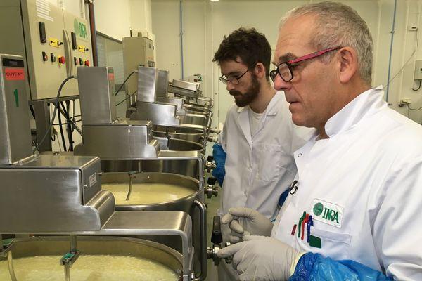 Le hall fromager, véritable mini usine à fromages, fabrique et affine les échantillons qui vont être étudiés dans le laboratoire.