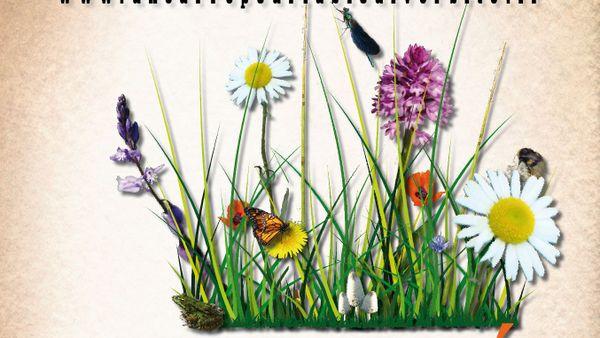 L'affiche de l'opération Un carré pour la biodiversité