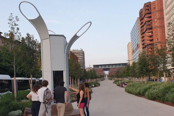 Installation de l'arbre à algue, allées Jean Jaurès à Toulouse