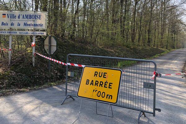 Comme à Amboise en Indre-et-Loire, l'accès aux forêts de toute la région Centre-Val de Loire est interdit durant le confinement.