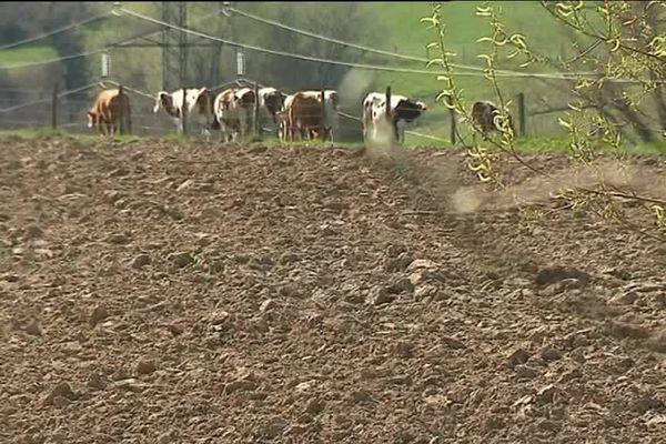 Des terres agricoles menacées par une projet de zone commerciale ?