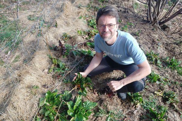 Didier Flipo, spécialiste du potager, nous fait part de ses conseils pour bien entretenir son potager en ce week-end clément.