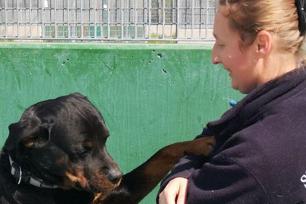 Catherine Bronner travaille à la SPA de Strasbourg depuis 27 ans, toujours avec la même passion pour les animaux