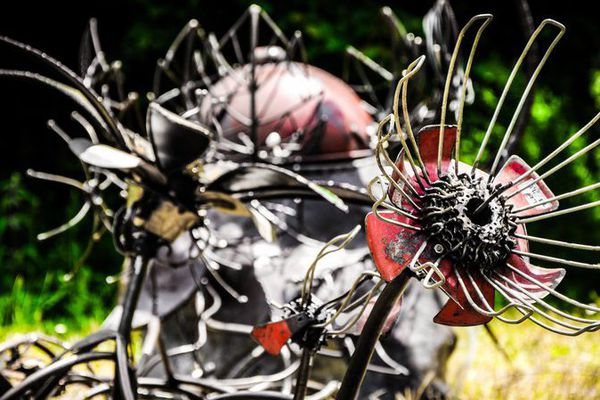 Le murmure des plantes