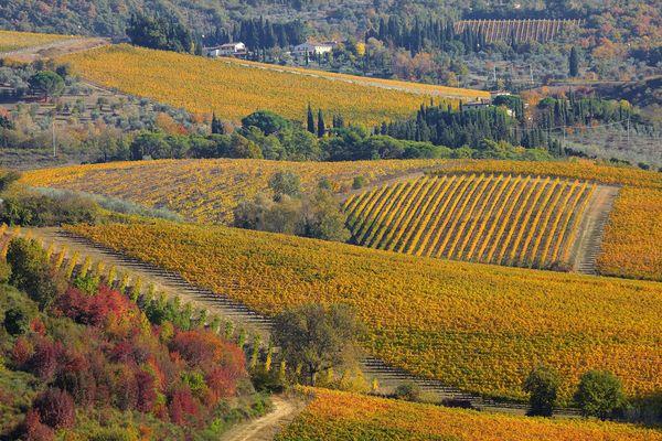 - Photo d'illustration - Paysage de Toscane en Italie