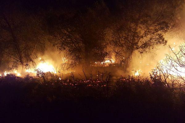 Incendie dans l'Aude le 10 juillet 2018.