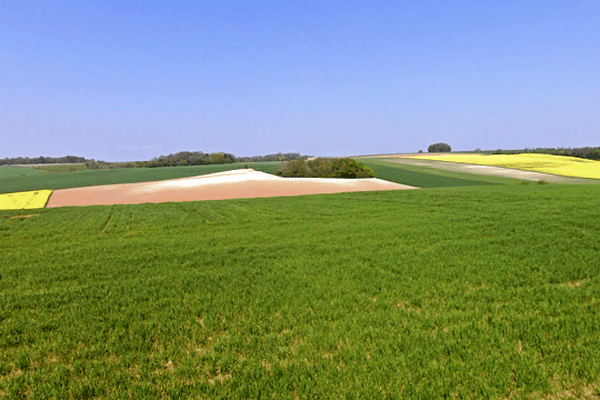 Le centre de gravité du Nord-Pas-de-Calais - Picardie se situerait quelque part au milieu de ces champs, selon l'IGN.