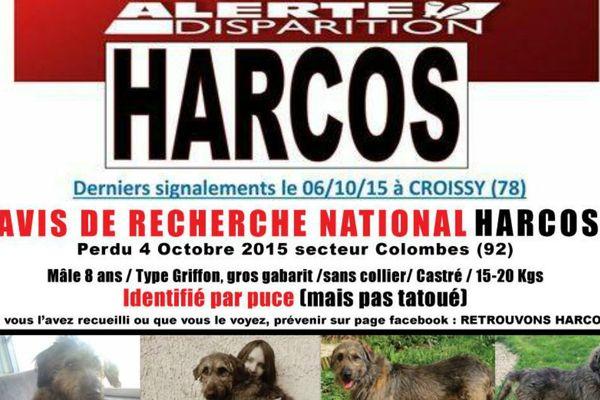 """""""Alerte disparition"""" sur Facebook... Pour retrouver un chien disparu dans les Hauts-de-Seine."""